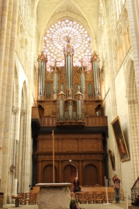 Organs in the Cathedral